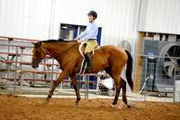 2013 Cleveland Co. Horse Show - English Flatwork